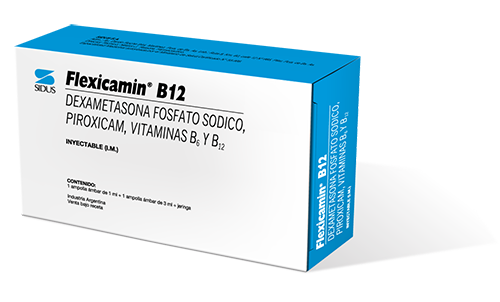 FLEXICAMIN B 12 INYECTABLE
