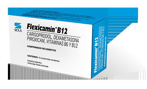 FLEXICAMIN B12 COMPRIMIDOS